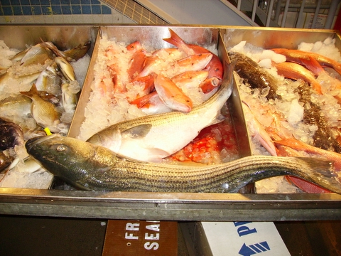 http://www.newfultonfishmarket.com/wholesalers/photos/montauk_seafood_co.JPG